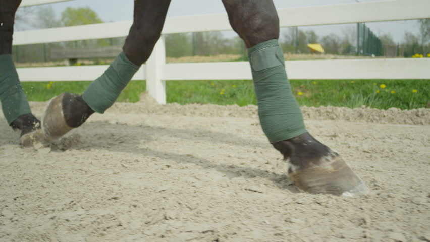 how to set up a horse arena