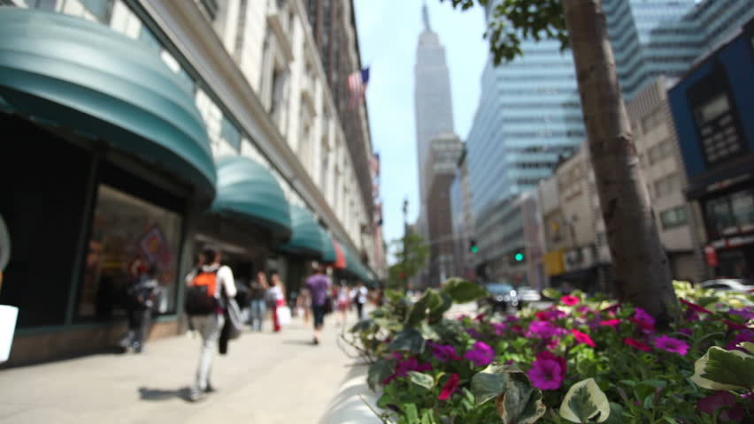 People walking down 34Th street in New York City. Focus is on flowers and leaves in tree pot. | Shutterstock HD Video #10286315