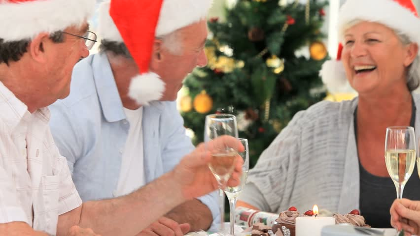 Elderly friends celebrating - HD stock footage clip