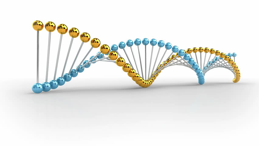 DNA Spiral Animation on white background