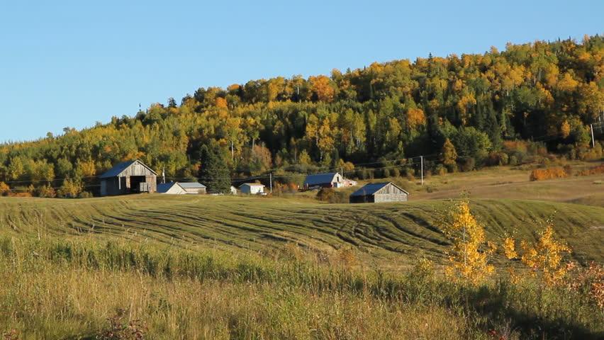 Rural Ontario field. Northern Ontario near Thunder bay.