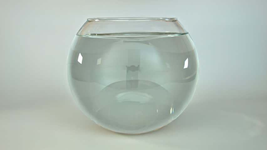 how to change water in fish bowl