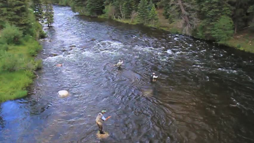Moving water plants stock footage video 2660777 shutterstock for Crested butte fishing