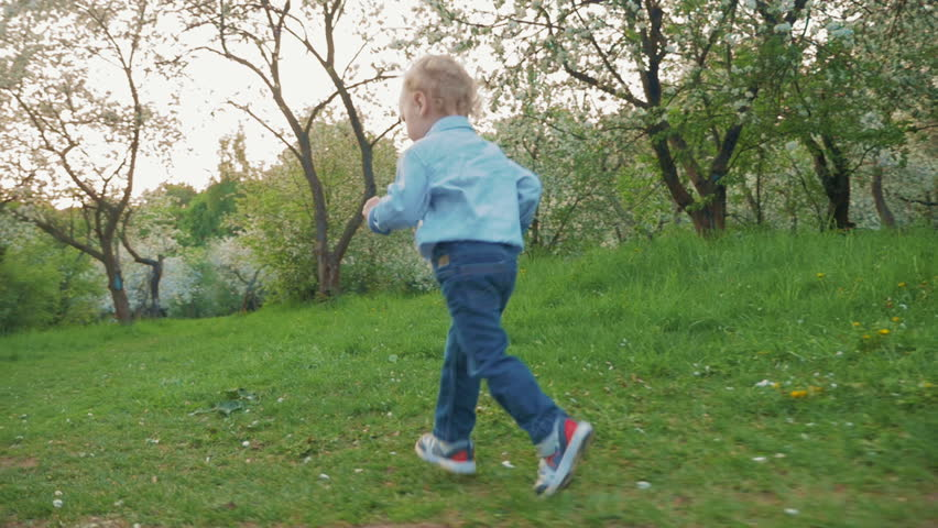 Slow motion steadicam shot of little boy in blue shirts and jeans running in green park on background of bloomy trees. Happy carefree childhood - HD stock video clip
