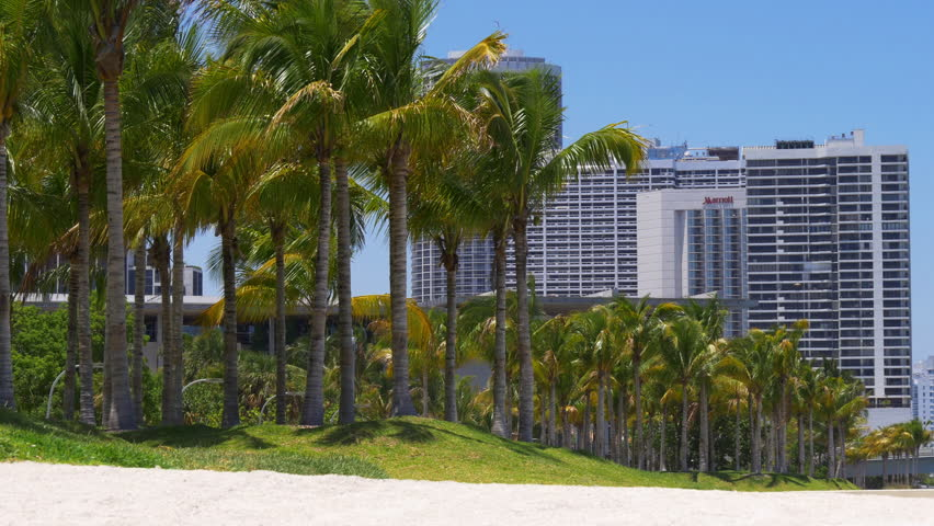 MIAMI, USA - MAY 2015 summer day miami downtown palm park hotel panorama 4k florida usa - 4K stock footage clip