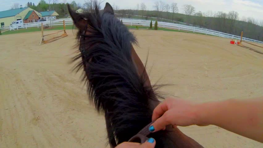 First Person View of Riding a Horse   Shutterstock HD Video #11890520