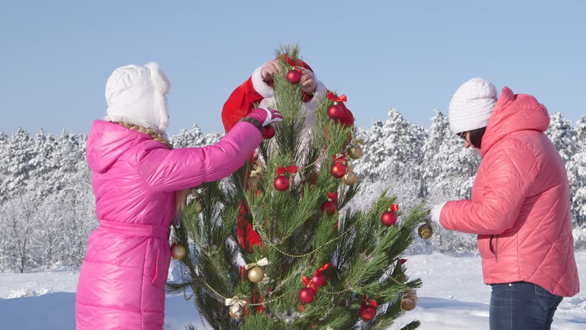Christmas holidays recreational activity in winter forest family decorating Christmas tree  - HD stock video clip