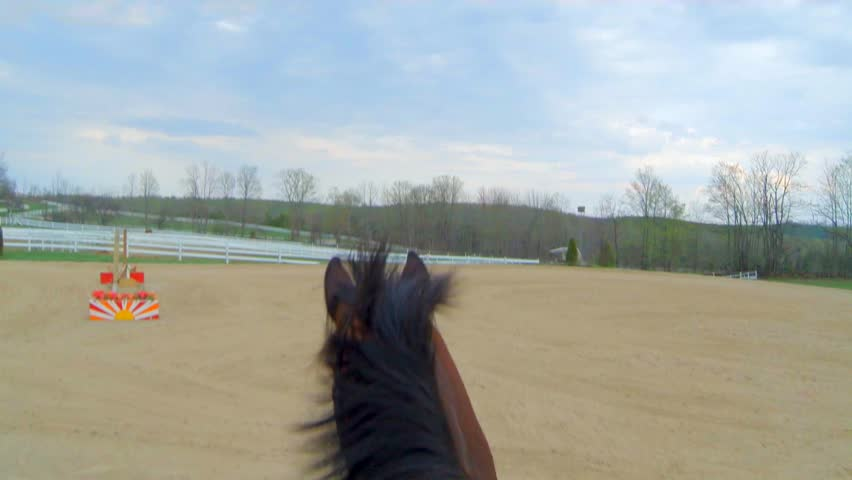Riding a horse in a ring first person view gopro | Shutterstock HD Video #12371489