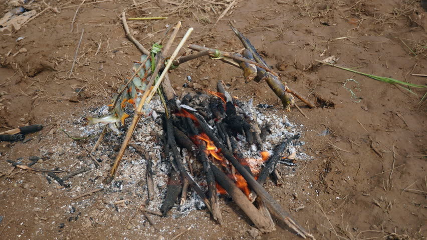 how to cook fish over an open fire