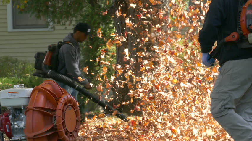Mans with leaf blowers clean up autumn leaves. - 4K stock video clip