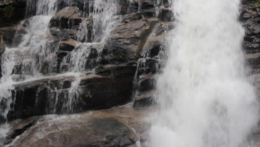 Waterfall in forest,blur style   Shutterstock HD Video #12469436