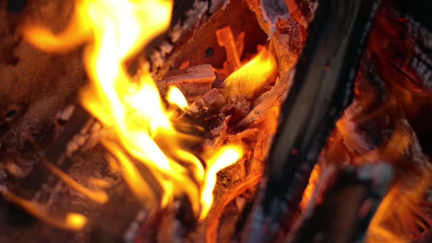 Campfire flames close up - 4K stock video clip