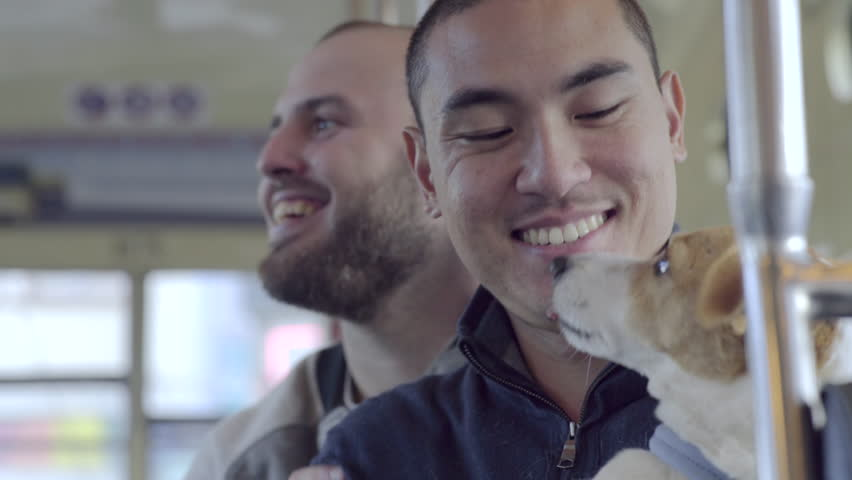 Closeup Of Gay Couple Riding Street Car With Dog, Asian Man Gets Kisses From His Dog And Boyfriend, Cute