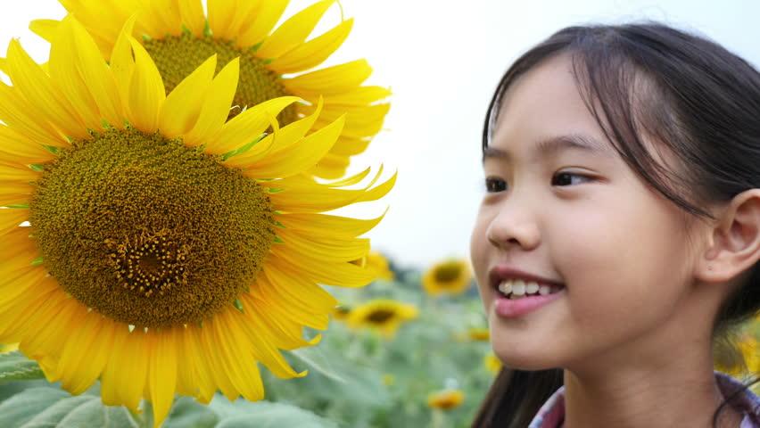 Happy Asian girl kissing sunflower in the field, Pan shot | Shutterstock HD Video #12719438
