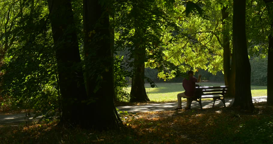 Man at The Bench is Leaving Freelance Programmer Designer Copywriter Accountant Tourist, Put His Backpack On and Walking Away, businessman , park alley, tree trunks,summer, sunny day, green grass, - 4K stock video clip