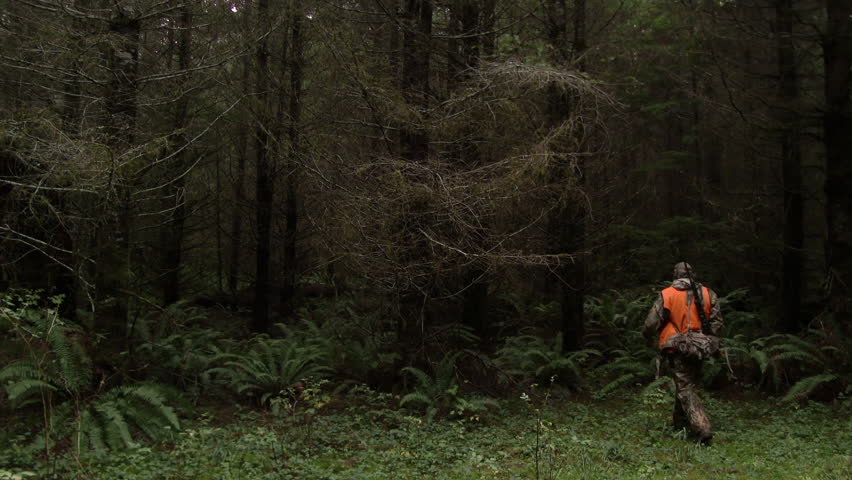 Unrecognizable man walking into forest in Washington State during hunting season.