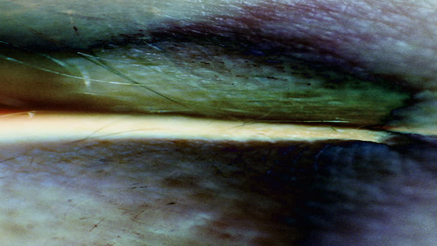 A close-up, strange composition of human skin. - HD stock video clip