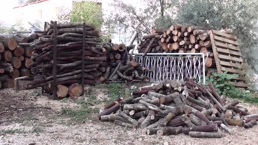 Firewood piles in the yard