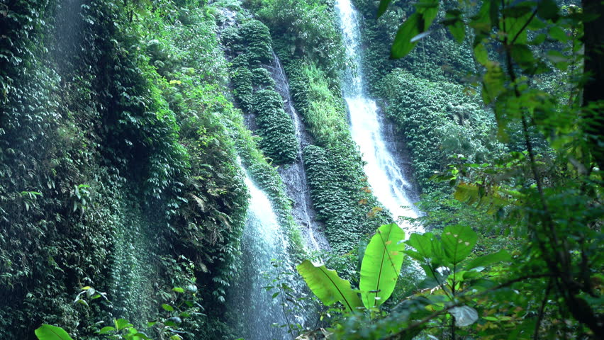 View of waterfall in jungle