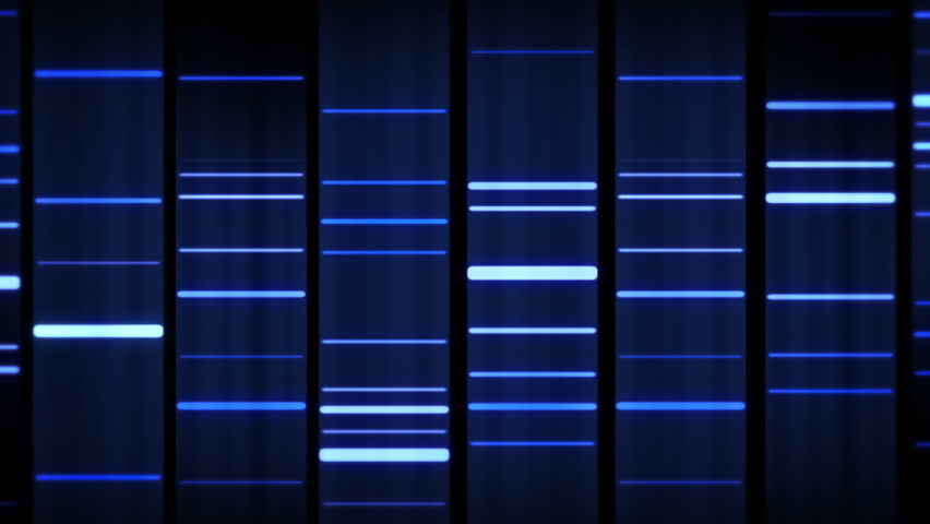DNA Sequence. Zoom out. Black-Blue. 3 videos in 1 file. Lateral and frontal view of DNA sequences.