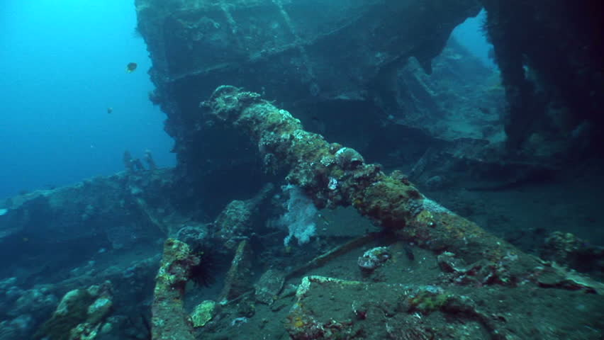 USAT Liberty wreck, Tulamben, Bali - HD stock video clip