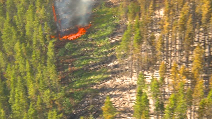 aerial, gyro-stabilized, over forest fire small flames below - HD stock footage clip