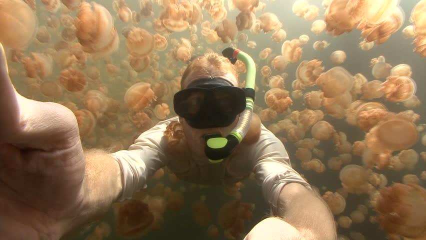 Snorkeler in Jellyfish Lake, Palau