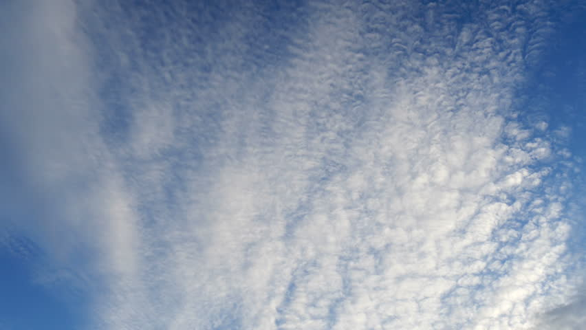 Header of altocumulus