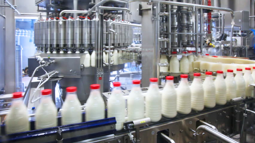 fresh milk poured into bottles, screwed red caps and send to consumers