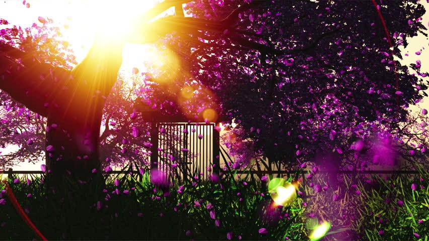 Mysterious Cherry Blossoms Japanese Garden cartoony 3D render - HD stock video clip