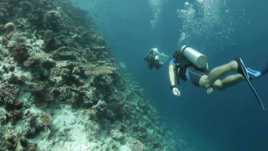 diving behind scuba divers along coral reef