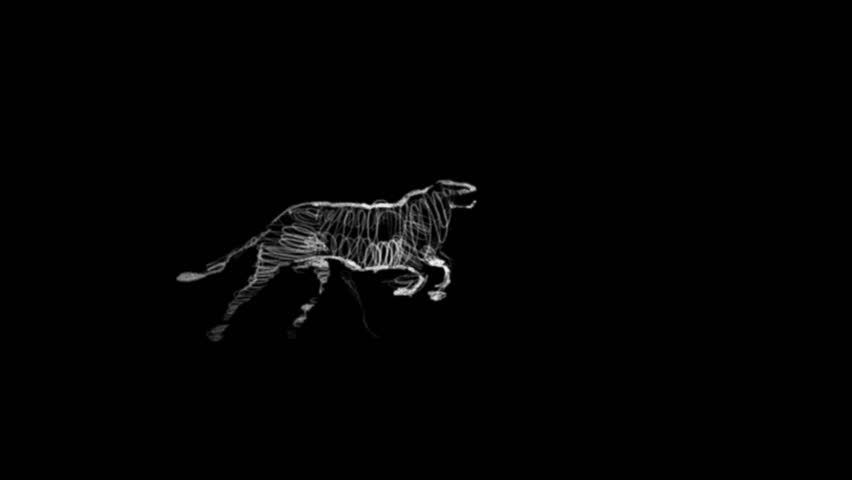 Athlete becomes leopard - rotoscoping technique