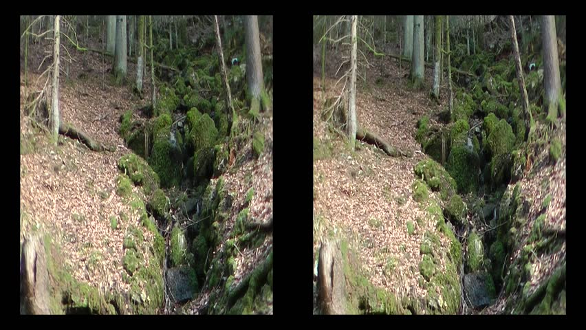 3D brook in Black Forrest (Germany) - HD stock video clip