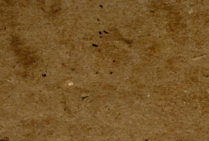 Cardboard cutup texture