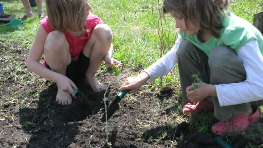 group of elementary kids and toddler baby planting and digging in the garden  - HD stock footage clip