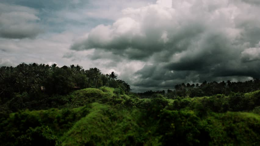 Timelapse tilt up of valley in Ubud, Bali.