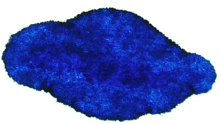 Blue Ink Stain Expansion (HD). Blue Ink Expands over time lapse on a white fiber surface.