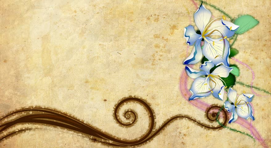 old style decorative backdrop with growing paint flowers - HD stock video clip