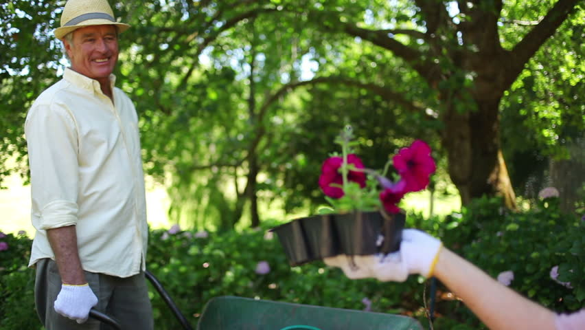 Mature Woman Speaking To A Man Is Holding Flowers In A Garden Stock Footage Video 2361698