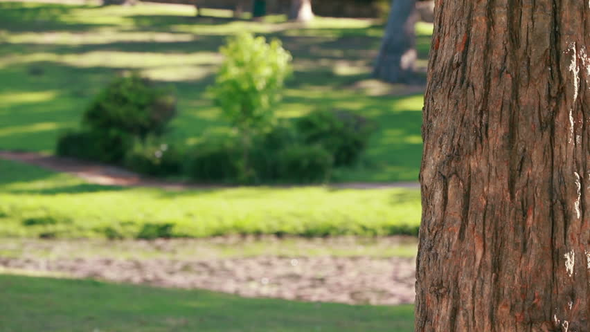 Smiling woman hanging up her mobile phone while standing in a park - HD stock footage clip