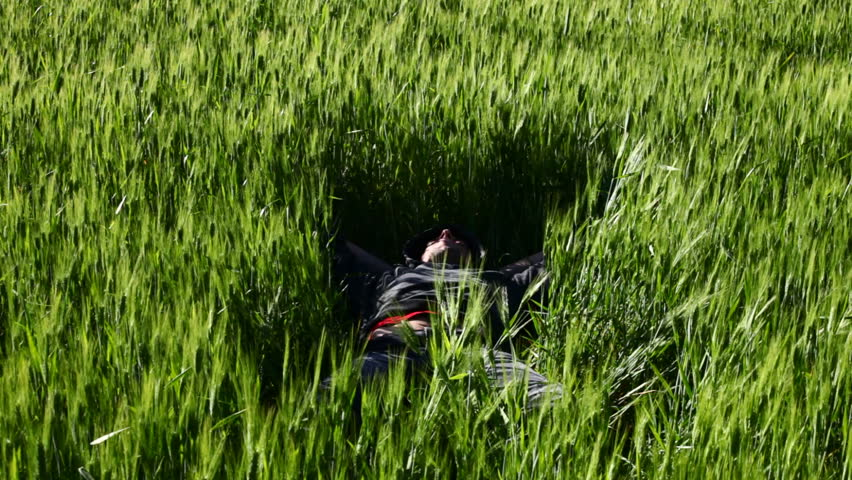 A boy sleeping in a field of wheat - HD stock video clip