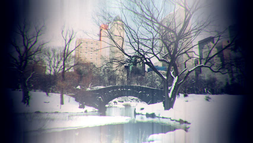 People in Central Park New York City winter, tree next to bridge nostalgic look  | Shutterstock HD Video #24251894