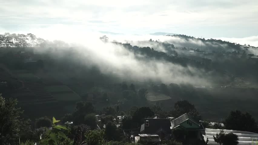 DA LAT, VIETNAM, Sep 23, 2015: pine forest, highland Da Lat city fog in the morning | Shutterstock HD Video #25001756