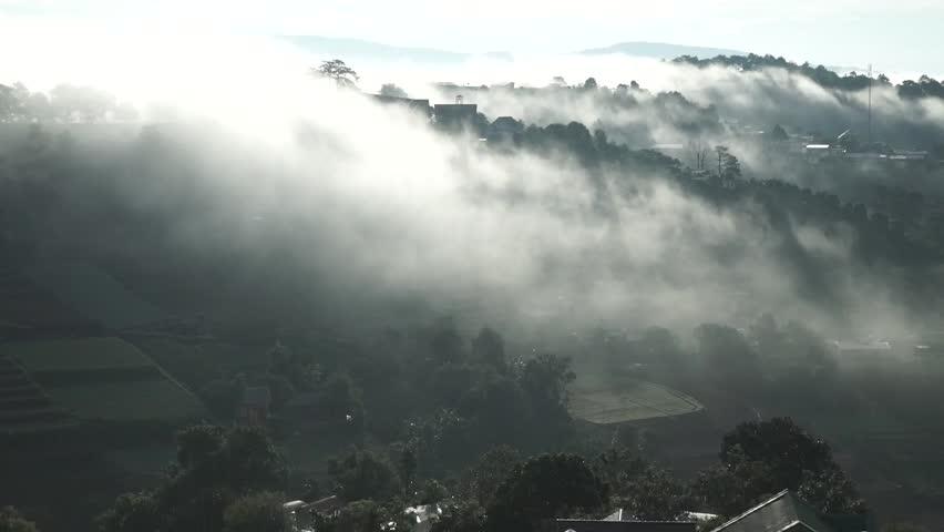 DA LAT, VIETNAM, Sep 23, 2015: pine forest, highland Da Lat city fog in the morning | Shutterstock HD Video #25001765