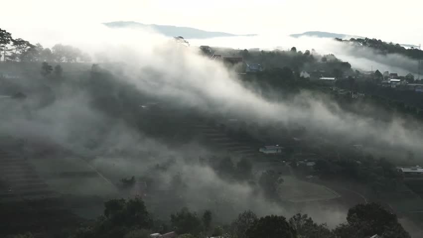 DA LAT, VIETNAM, Sep 23, 2015: pine forest, highland Da Lat city fog in the morning | Shutterstock HD Video #25001774