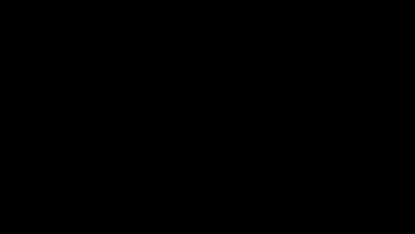 Door Opening. - HD stock footage clip
