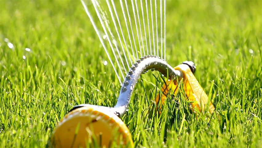 Sprinklers. Sprinkler spraying water on back yard green grass
