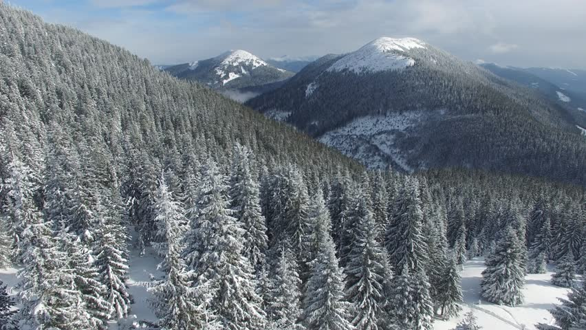 Flight down in the winter mountains. Changing the scale of the survey from the mountain peaks on the horizon to the huge snow-covered fir trees.   Shutterstock HD Video #26229032