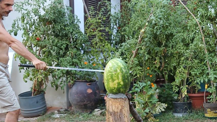 katana cutting a watermelon - HD stock footage clip