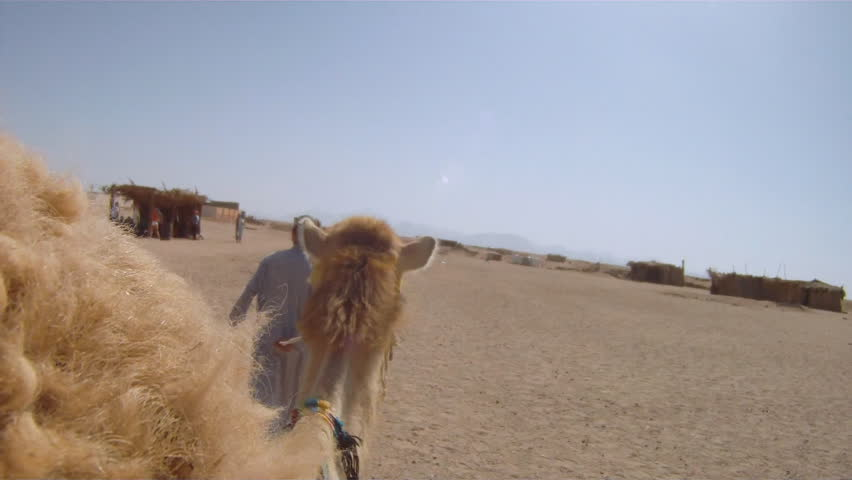 pov tourist rides camel through the Sahara Desert  05/07/2011
